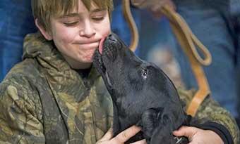 犬-顔に飛びつく-人に飛びつく-理由-止めさせる-舐める-画像